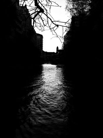 The River Walk in San Antonio! Water Nature Tree Sky No People Silhouette Outdoors Day Beautiful Myview Best  Photooftheday Texas City Tree Night Travel Destinations SanAntonioTexas Softglow Picsay Picsaypro  EyeEm Best Shots Eyeemcollection The Architect - 2017 EyeEm Awards The Great Outdoors - 2017 EyeEm Awards EyeEmNewHere Black And White Friday