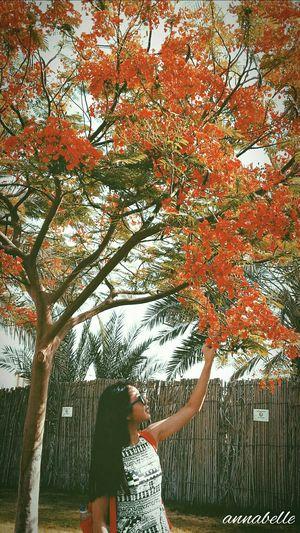 Red makes me joy! EyeEm Nature Lover Eyeem Flower Lover Flower Shot Red Hotday Abudhabi Travel Photography Throwback Enjoying Life Love