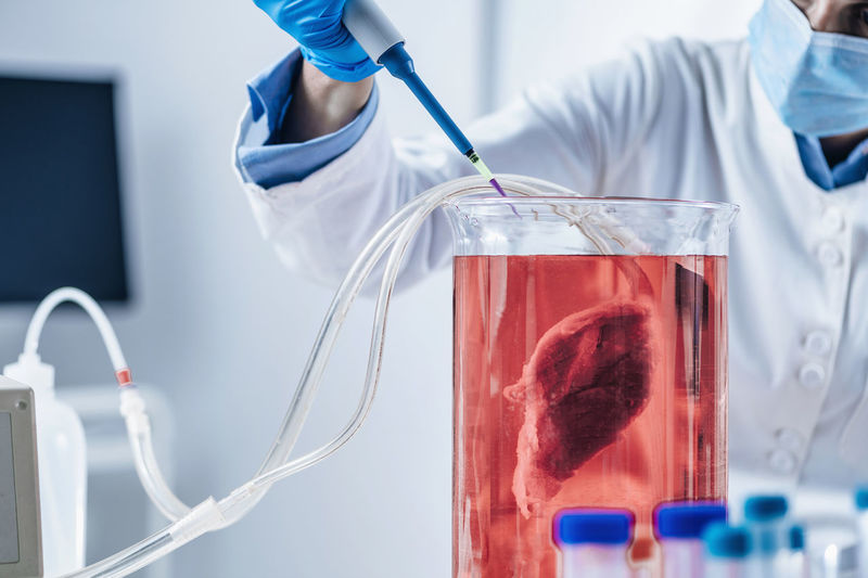 Lab-grown meat or in vitro meat. food technology of the future