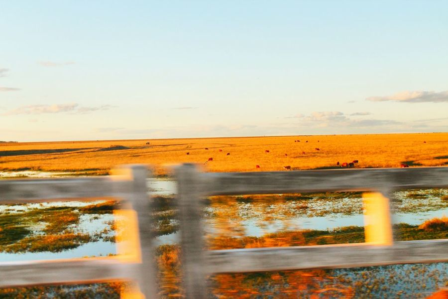 Colors And Patterns Tranquil Scene Water Scenics Sky Nature Beauty In Nature Non-urban Scene Photoshoot Photography Sunset Uruguaiana