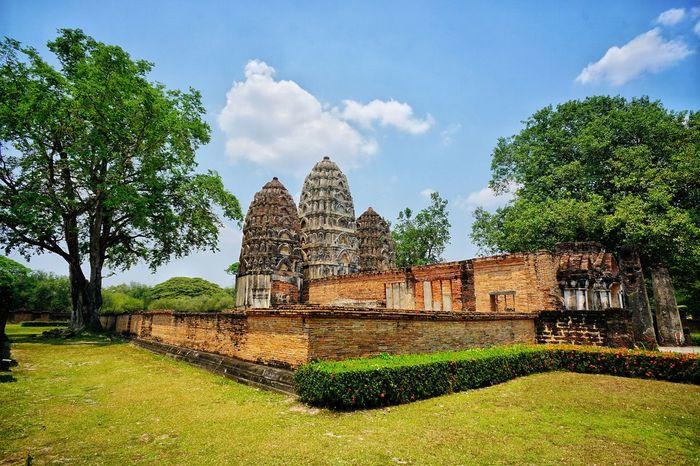 Ancient Civilization Statue Place Of Worship Religion Spirituality Tree Architecture Building Exterior Built Structure