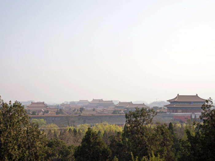 Forbidden City, Beijing Architecture Beijing, China Building Exterior Built Structure China City Cityscape Clear Sky Colossal Day Forbidden City Gugong House Imperial Palace Mainland China Mandarin Monumental  Nature No People Outdoors Sky Tourist Destination Travel Travel Destinations Tree