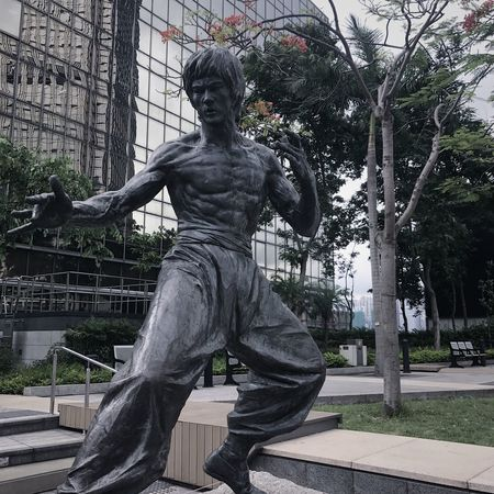 Statue Sculpture Art And Craft Tree Built Structure Architecture Outdoors Building Exterior Park - Man Made Space Day City Library No People Bruce Lee The Architect - 2017 EyeEm Awards