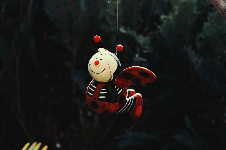 Close-up of red toy hanging on tree