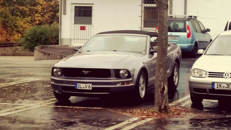 Ford Mustang Ford Nice Cars Check This Out Relaxing