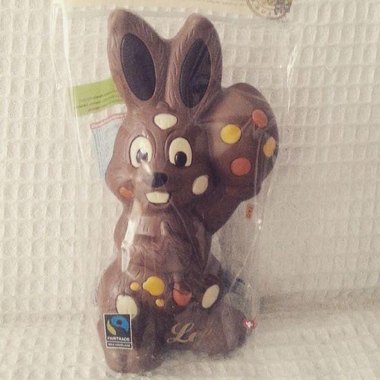 Nadchodzi Wielkanoc Easter Is Comming Zając Czekoladowy Taki Duży Mmm