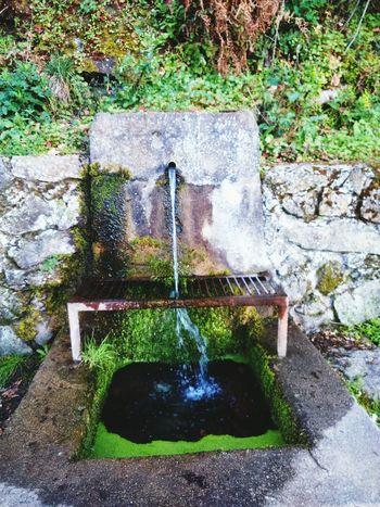 MisFotos Naturaleza Fuente❤Agua Taking Photos Fuentes Agua Natural