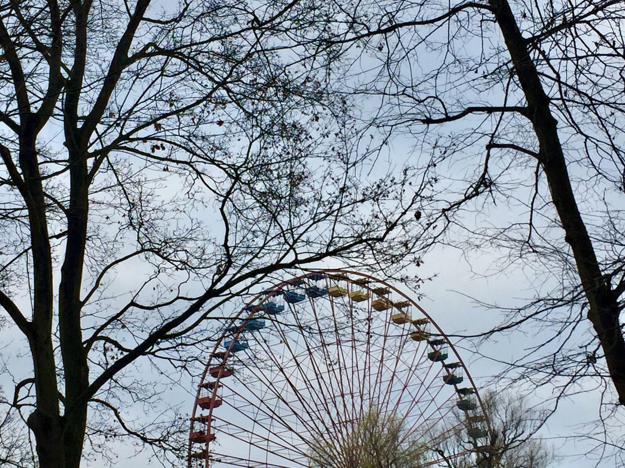 tree, bare tree, branch, sky, amusement park ride, ferris wheel, amusement park, plant, no people, nature, low angle view, arts culture and entertainment, day, architecture, travel destinations, outdoors, clear sky, large, built structure, fairground