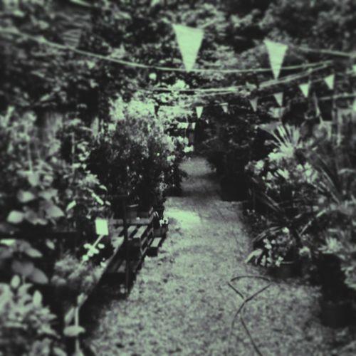 Battersea Floral Summer Vscocam