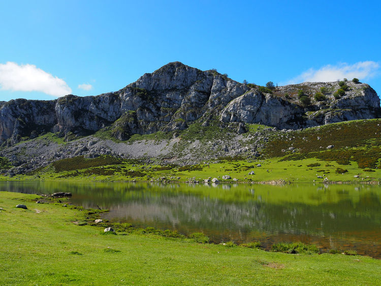 View of Ercina Lake in Lagos de Covadonga, Asturias - Spain Asturias Ercina Lake Green Lagos De Covadonga Picos De Europa Rural SPAIN Travel Trekking Beauty In Nature Covadonga Ercina Hill Idyllic Lago Ercina Lake Landscape Mountain Mountain Range Nature Outdoors Peak Reflection Scenics - Nature Water