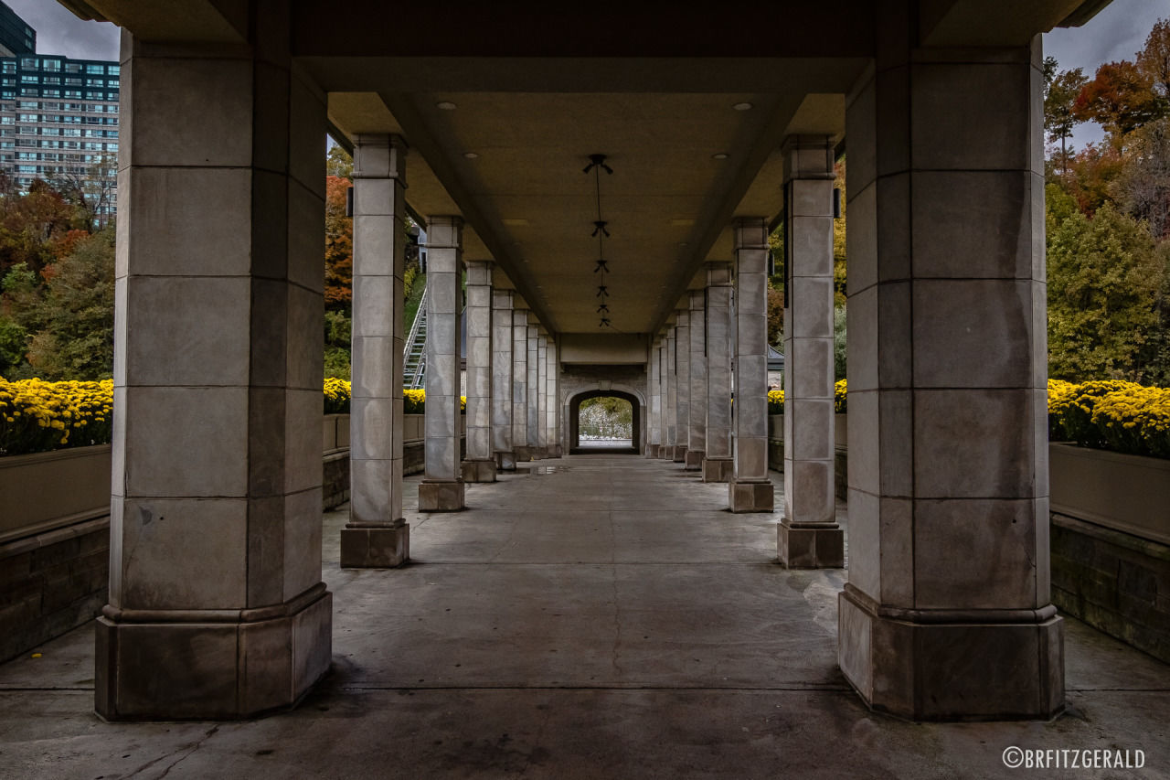 architectural column, architecture, the way forward, built structure, corridor, bridge - man made structure, no people, indoors, day