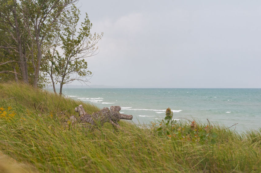 Lake Huron, Canada Beauty In Nature Day Nature No People Outdoors Pinery Provincial Park Sand Dunes Scenics Sky Tranquility