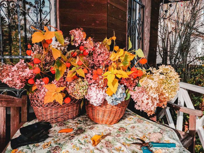 Orange flowering plants in basket