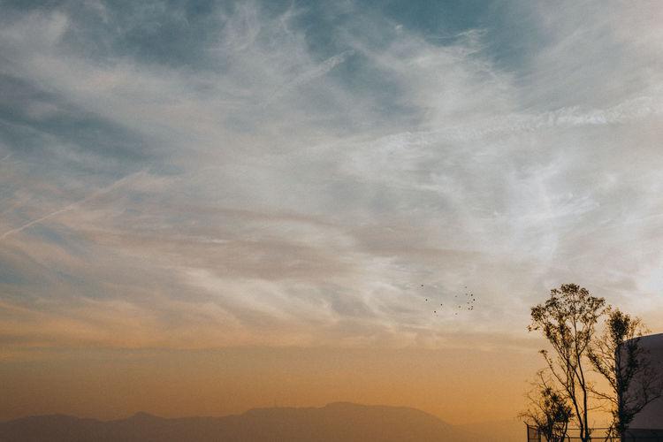 Cloudscape Orange Sky Silhouette Sky And Clouds Blue Clouds Clouds And Sky No People Orange Color Scenics Sky Skyporn Sunset