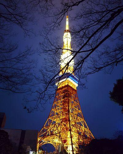 tokyo 东京塔 leicaq