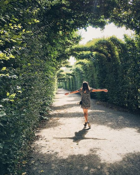 Rear view of young woman walking on footpath amidst trees