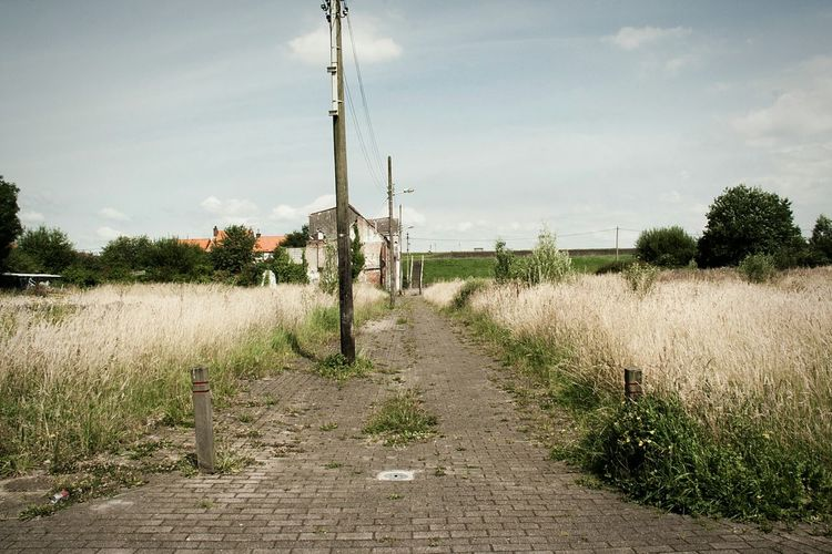 Landscape Grass The Way Forward Tranquility Abandoned Places No People Empty Street Forgotten Places  Doel Belgium