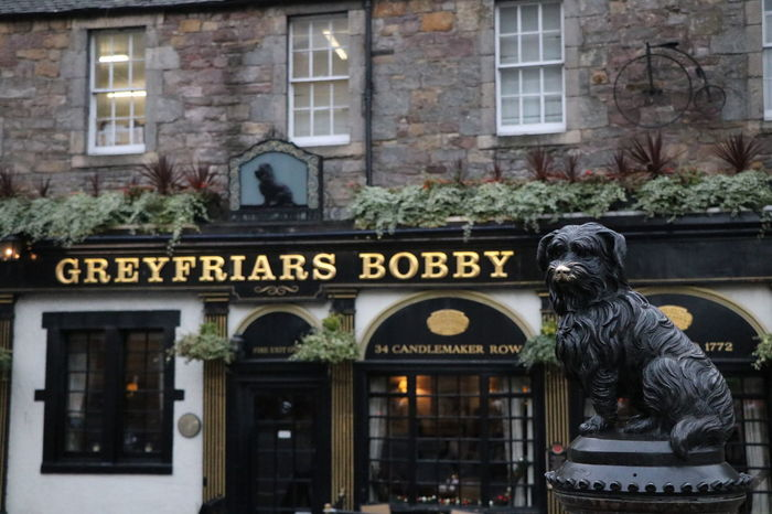 Greyfriars Bobby EyeEmNewHere Travel Destinations Destination Streetphotography Memorial Scotland Stories From The City Edinburgh Greyfriars Bobby Dog Loyalty City Statue Sculpture Architecture Building Exterior Built Structure Street Art Historic Sculpted Exterior Building Location