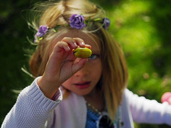 Seed of the Oak Blond Hair Child Childhood Females Flower Focus On Foreground Front View Girls Hair Hairstyle Hand Headshot Holding Innocence Leisure Activity Lifestyles One Person Outdoors Plant Portrait Real People Teenager Women