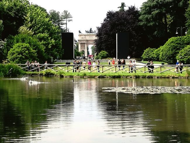 Arco Della Pace Arch Arch Of Peace Sempione Park Sempione Parco Sempione Arch Of Triumph Tree Water Lake Reflection Architecture Sky Building Exterior Built Structure Travel Swan Reflecting Pool Waterfront