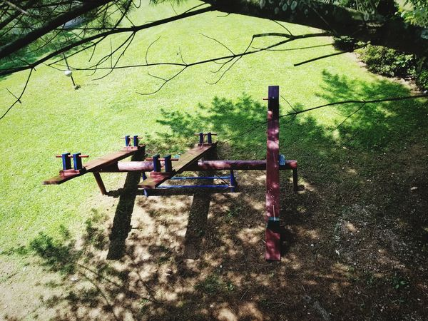 Child Bush Toy Playground Seesaw Kids Outdoors Wood Nature Natrual  Outdoorsman Sport Playing Empty Twig Dry Spider Stick Fresh Activity Vacent Prospective View Tree Shadow Men Growing Blooming Plant Life Dried