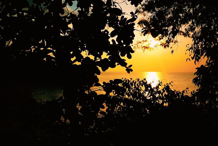 Sun Sunset Beach Beauty In Nature Nature Outdoors