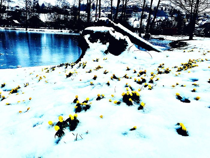 Icey Spring Day High Angle View Day Water Lake Outdoors Scenics EyeEmNewHere No People Beauty In Nature Nature