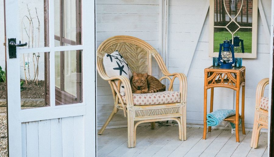Ginger cat resting in the summer Animal Ginger Cat Seat Chair Architecture Art And Craft No People Representation Built Structure Building Wall - Building Feature Outdoors Entrance Craft