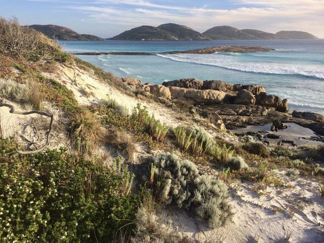 Beach Life EyeEmNewHere Isolated West Australia Coastal Vegetation Pristine Beach Sand Dunes Travel Destinations Turquoise Sea