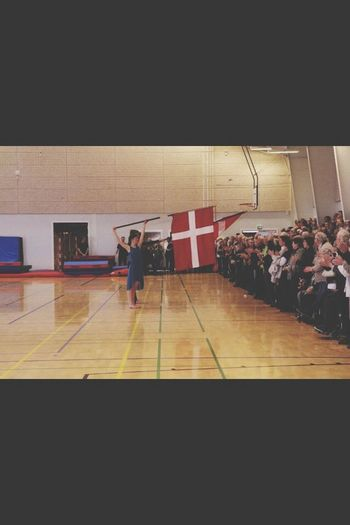 Gymnastics Denmark Flag Sport
