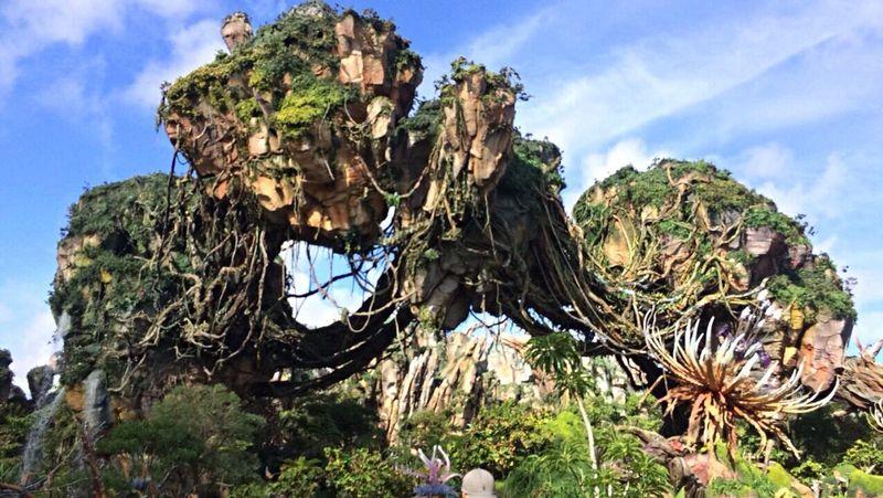 Disney DisneyWorld Animal Kingdom Pandora Tree Sky Man Made Structure Day Vacations Happiestplaceonearth Travel Destinations