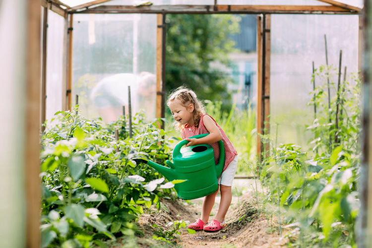 A cheerful baby with a watering can waters the plants in the greenhouse, helps to take care of them.