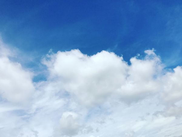 Blue Cloudscape Cloud - Sky Heaven Fluffy Wind Flying Backgrounds Bright Summer Cotton Sky Dramatic Sky Weather Sunny Day Softness