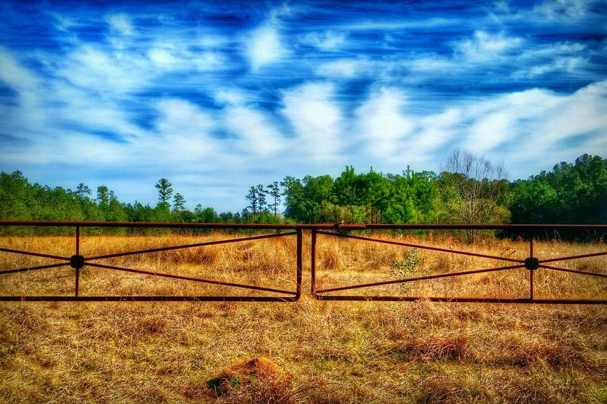 Rural Gateway -- my back is still kind of killing me today, but I was able to run out for a few to drop my daughter off at a birthday party, and I saw this pretty, little Rural Scene, so I had to shoot it From A Moving Vehicle. 😊 Now I'm back at home, and it's time to get a little work done on my website, so you guys can join it soon! 😉 Then rest some more so hopefully I'll be better enough to go back to work on Monday. I hope everybody's having a lovely weekend so far! ☺✌ HDR Hdr_Collection Sky Clouds And Sky Dramatic Sky Moody Sky Mood Atmospheric Mood Atmosphere Nature Beauty In Nature EyeEm Nature Lover Landscape Landscape_photography Landscape_Collection Gate Field Trees Rural Rural Scenes Rurex Rurexeploration The Great Outdoors - 2016 EyeEm Awards