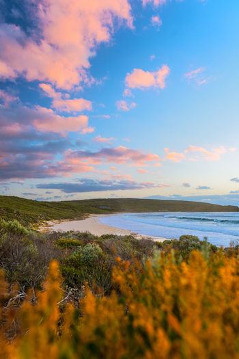 Smth's Beach at sunset Sky Water Land Sea Nature Beach Beauty In Nature Scenics - Nature Tranquility Plant Tranquil Scene Day No People Ocean Travel Travel Destinations Australia Margaret River Region Sunset Dusk Colorful Landscape Selective Focus Cloud - Sky Outdoors