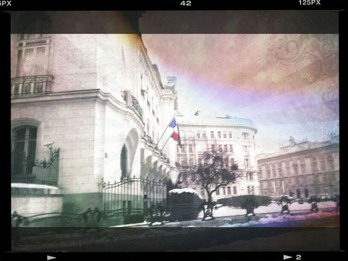 France Driving And Shooting Flag Speed Shooting French Consulate Consulate