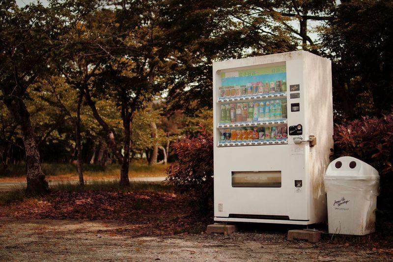 ゴミ箱見てから自販機見ると親子に見える不思議。 Family Trees Dustbox Hi! Melancholy