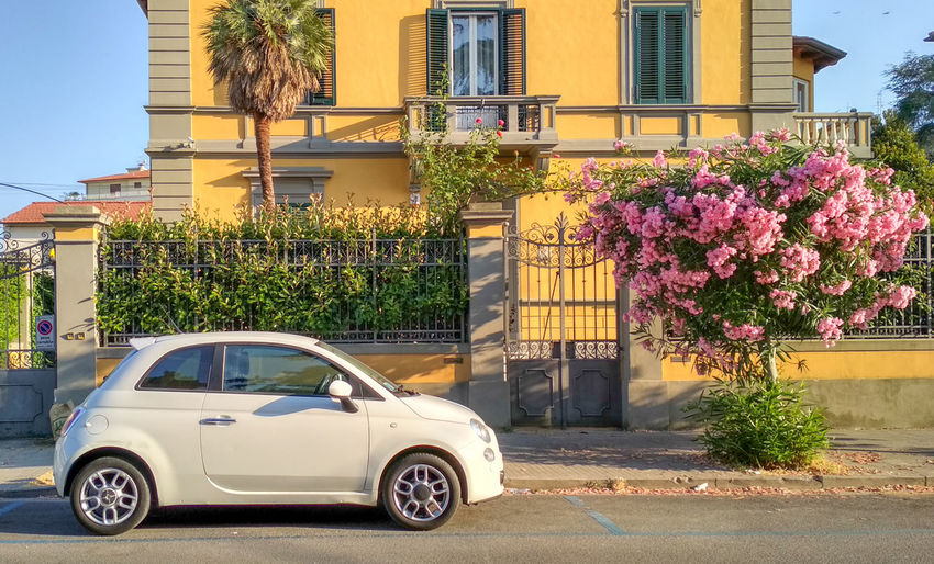 Absolutely italian Architecture Building Exterior Car City Day Growth Italy Nature No People Plant Transportation