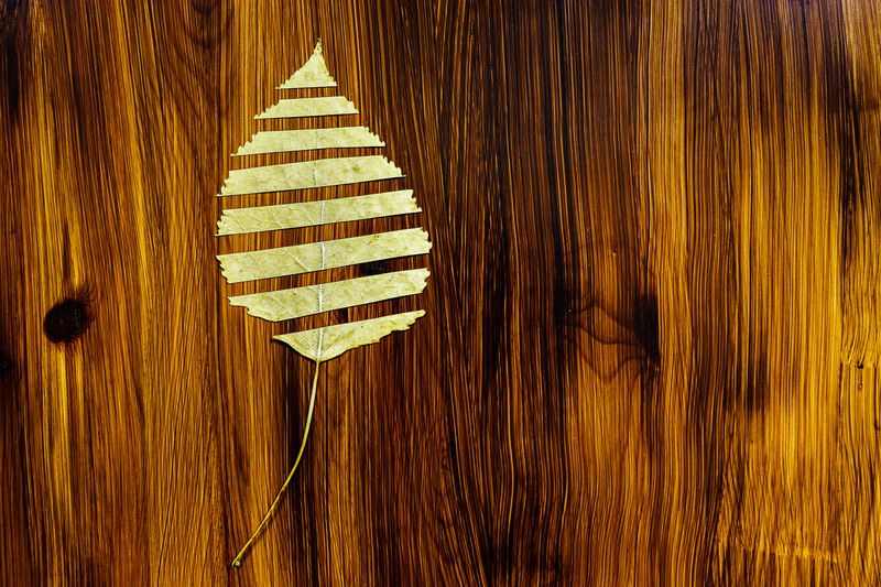 Autumn Autumn Leaves Brown Close-up Creativity Day Decoration Design Directly Above Flooring Food Food And Drink Indoors  Indulgence Italian Food No People Pattern Still Life Table Temptation Wall - Building Feature Wood Wood - Material Wood Grain