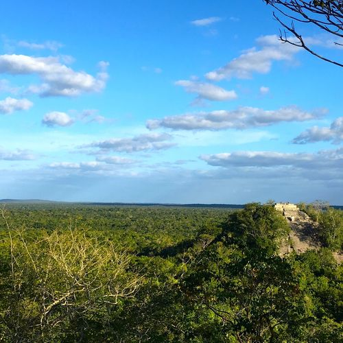 Calakmul biosphere reserve and archeological site. Calakmul Campeche Mayan Mayan Ruins Mexico Travel Photography Beauty In Nature Calakmul Biosphere Reserve Horizon Over Land Jungle Landscape Mayan Wonders Travel Destinations