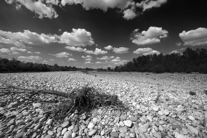 Black And White Landscape Blackandwhite Blackandwhite Photography Calm Calm Water Cloud Cloud - Sky Cloudy Day Nature No People Outdoors River Riverside Shootermag Sky Taking Photos Tranquil Scene Tranquility Water Landscape_Collection The Great Outdoors - 2016 EyeEm Awards Relaxing Italy Landscape