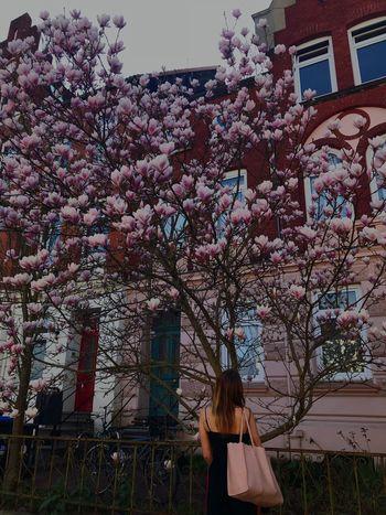 And I'm on the block, and I'm on the block Flowering Plant Flower Blossom Freshness Hanging