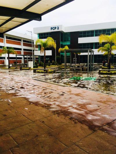 Facultad Contaduría Publica/BUAP Architecture Built Structure Building Exterior Day Nature No People Plant City Water