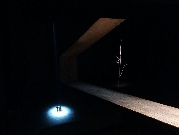 Estragon I Thessaloniki Spotlight Theater Surrealism Minimalism Light And Shadow Night Indoors  No People