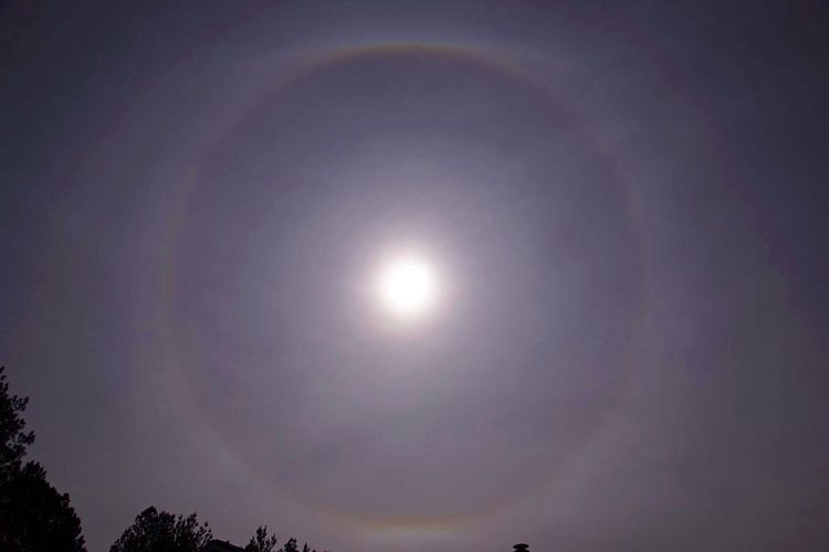 Thin layer of cirrus clouds created a sun halo earlier today. WeatherPro: Your Perfect Weather Shot Sun Halo Clouds And Sky Cirrus