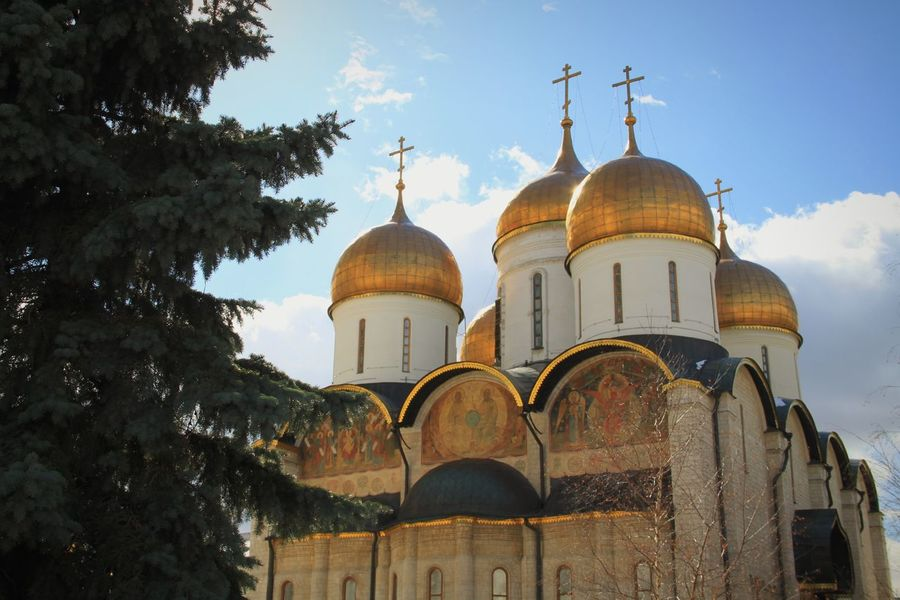 Dome Architecture Religion Travel Destinations Place Of Worship No People Built Structure Outdoors Sky Day Tree Gold Colored Golden Moscow Kremlin Kremlin Complex Tourism Russia Kremlin Architecture Russia Moscow, Russia Spirituality Place Of Worship Rooftop History