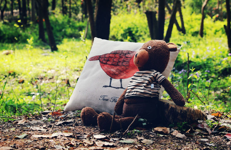 Bear Child Childhood Childhood Memories Children Close-up Forest Growth Happiness Leaf Life Lifestyles Lovely Memories Nature One Person Outdoors Stuffed Toy Teddy Bear Toy Toy Bear Toyphotography Toys Tree Tree Trunk The Great Outdoors - 2017 EyeEm Awards The Portraitist - 2017 EyeEm Awards