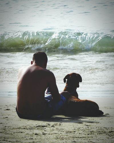 Best friend Beach One Man Only Sand Water Sitting Shirtless Adult Men Sea Nature Day Love Tranquility Reflection Brazil Animal Dog Pet Bestfriend