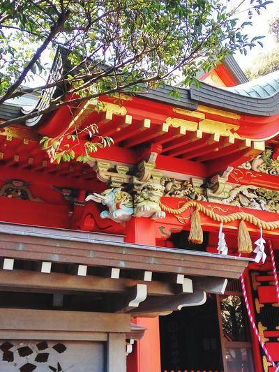 Traditional Japanese Japanese Architecture Japan Low Angle View Day Outdoors Built Structure No People Red Building Exterior Chinese Dragon
