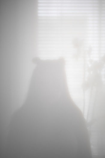 Shadow of person standing in fog